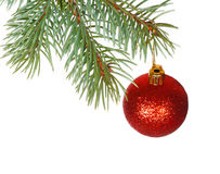 Red ball on the branch of Christmas tree Stock Photos
