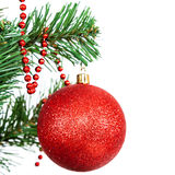 Red ball on the branch of a Christmas tree. Red ball on the branch of a Christmas tree, isolated on white background Royalty Free Stock Photos