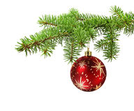Red ball on christmas tree branch. Red ball hanging on a green christmas tree branch, isolated stock images