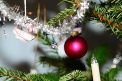 Red ball on christmas tree Stock Photo