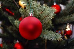 Red ball. Christmas tree toy. Stock Photography