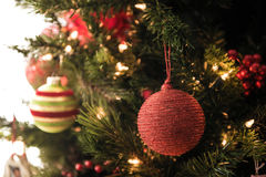 Red Ball Decoration on Christmas Tree. Focus on One red christmas decoration with just enough information in the background to depict a christmas tree stock photography