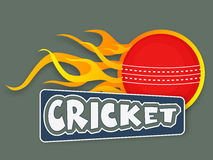 Red ball in flame with text for cricket concept. Red cricket ball in flame with text cricket, sports concept Stock Images