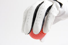 Free Red Ball Glove Stock Images - 21524014
