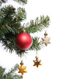 Red ball and gold stars on Christmas tree branch Stock Images