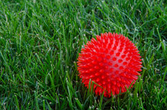 Red ball in grass. A red plastic ball sits in the grass in between rounds of fetch with the family pet stock image