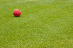 Red Ball on Green Field Stock Photo