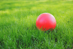 Red ball on green grass. Royalty Free Stock Image