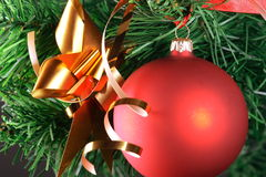 Red ball hanging from christmas tree.  Stock Photography