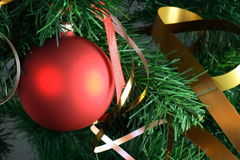 Red ball hanging from christmas tree.  Stock Images