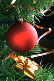 Red ball hanging from christmas tree Stock Images