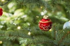 Red ball hanging on christmas tree Stock Photos