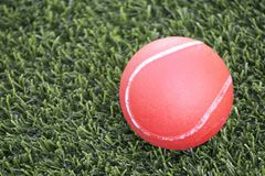 Red ball lying on green grass Stock Photo