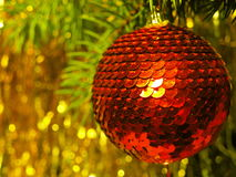 Red ball on New Year tree. Glowing red ball hanging on a Christmas tree branch Stock Images