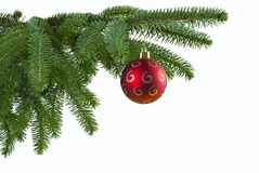 Red Ball On Spruce Branch Royalty Free Stock Photos