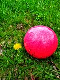 Red ball. By springs latest creation Stock Photo