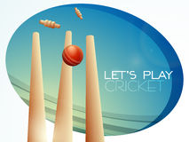 Red ball with wicket stumps for Cricket. Stock Photography