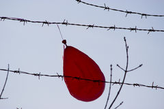 Red balloon. Red ballon stuck in barbed wire, blue sky Royalty Free Stock Photo