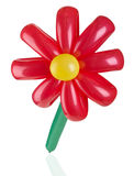 Red balloon flower on  white background Royalty Free Stock Photo