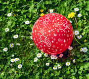 Red Balloon on green grass Stock Image