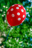 Red balloon in nature Stock Photography