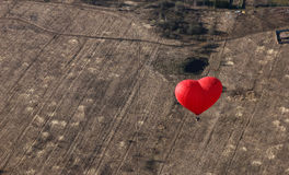 Red balloon in the shape of red heart hovers over field as a background Royalty Free Stock Photography