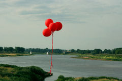 The red balloons in the air Stock Photography