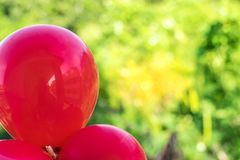 Red balloons on a bokeh tree background using wallpapers or backgrounds for a festive event.  Stock Images