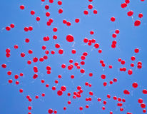 Red balloons. Fly into the sky at graduation Royalty Free Stock Image