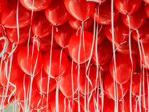 Red balloons hanging under a ceiling Stock Photography