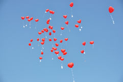 Red balloons with the messages Royalty Free Stock Photo