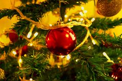 Red balls in the Christmas tree. Beautiful and centralized Christmas ball in a tree royalty free stock images