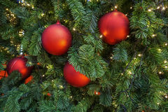 Red balls decoration on christmas tree Royalty Free Stock Photos