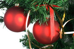 Red balls hanging from christmas tree Stock Photography