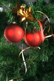 Red balls hanging from christmas tree Royalty Free Stock Photo