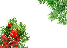 Red balls, ribbon and thuja twig Royalty Free Stock Images