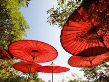 Red bamboo umbrellas & leaf shadow Stock Photos