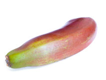 Red banana (Ensete ventricosum). Red Abyssinian Banana (Ensete ventricosum) isolated on a white background Stock Photo