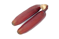 Red banana isolated. Stock Image