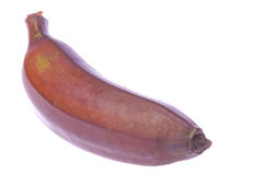 Red Banana Isolated Stock Photos