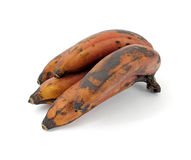 Red Bananas Stock Images