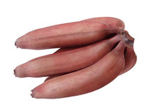 Red Bananas Stock Photography