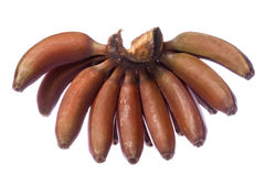Red Bananas Isolated Royalty Free Stock Photography