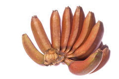 Red Bananas Isolated Royalty Free Stock Image