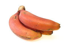 Red bananas Stock Photo