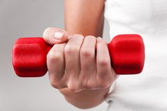 Red barbell Stock Photography