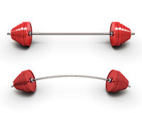 Red barbells  on white background. Royalty Free Stock Image
