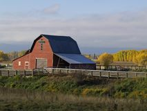 A Red Barn. This image of the red barn, fall colors, fence and grasses was taken in western MT Stock Photography