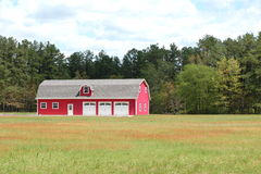Red Barn Stock Image