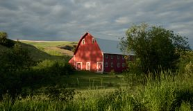 Red Barn. A red barn in the Palouse area of Washington state royalty free stock photography